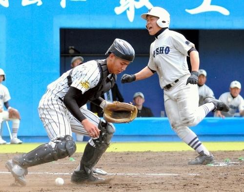 秋田   高校野球ドットコム 【秋田版】